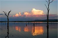 View over lake at sunset, Kariba, Zimbabwe Stock Photo - Premium Royalty-Freenull, Code: 682-02891769