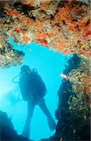 Portrait of a Diver Hanging in the Water Near Coral Reef Stock Photo - Premium Royalty-Freenull, Code: 682-02892911