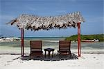 Lounger Chairs and Shade, Lac Bay, Bonaire, Netherlands Antilles Stock Photo - Premium Rights-Managed, Artist: photo division, Code: 700-02903740