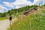 person hiking, Trentino Alto Adige italy Stock Photo - Premium Rights-Managed, Artist: F1Online, Code: 853-02914131