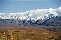 Snowline on Alaska Range, Denali National Park, Alaska, United States of America, North America Stock Photo - Premium Rights-Managednull, Code: 841-02915540