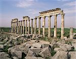 Apamea, Syria, Middle East