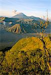 Bromo-Tengger-Semeru National Park at dawn, island of Java, Indonesia, Southeast Asia, Asia