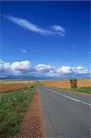 road landscape - The R319 road leading north east through agricultural area north of Bredasdorp, Western Cape Province, South Africa, Africa Stock Photo - Premium Rights-Managednull, Code: 841-02918884