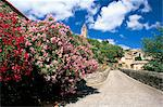 Oleander in flower, with village and 15th century tower beyond, Olargues, Herault, Languedoc-Roussillon, France, Europe Stock Photo - Premium Rights-Managed, Artist: Robert Harding Images, Code: 841-02920624