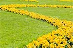 Yellow Flowers in Mirabell Garden, Salzburg, Salzburger Land, Austria Stock Photo - Premium Royalty-Free, Artist: Bettina Salomon          , Code: 600-02922798