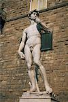 The statue of David by Michelangelo in the Piazza della Signoria in Florence, Tuscany, Italy, Europe Stock Photo - Premium Rights-Managed, Artist: Robert Harding Images, Code: 841-02925758