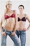 Female homosexual couple standing together Stock Photo - Premium Royalty-Free, Artist: CulturaRM, Code: 625-02926730