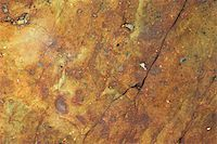 Close-up of a rock surface Stock Photo - Premium Royalty-Freenull, Code: 625-02926860
