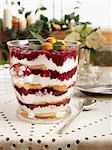 Cranberry Trifle Dessert                                                                                                                                                                                 Stock Photo - Premium Rights-Managed, Artist: Edward Pond              , Code: 700-02935587