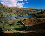 Rydal Water, Lake District National Park, Cumbria, England, United Kingdom, Europe                                                                                                                       Stock Photo - Premium Rights-Managed, Artist: Robert Harding Images, Code: 841-02944074