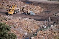 Logging plant at port, Gisborne, East Coast, North Island, New Zealand, Pacific                                                                                                                          Stock Photo - Premium Rights-Managednull, Code: 841-02946002