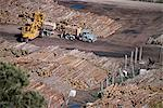 Logging plant at port, Gisborne, East Coast, North Island, New Zealand, Pacific                                                                                                                          Stock Photo - Premium Rights-Managed, Artist: Robert Harding Images, Code: 841-02946002