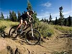 mountain biker on a trail Stock Photo - Premium Royalty-Free, Artist: Jon Arnold Images, Code: 640-02952177