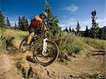 mountain biker on a trail Stock Photo - Premium Royalty-Free, Artist: Cusp and Flirt, Code: 640-02952178