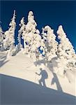 Shadow of a skier climbing the snow covered North Wrangell Trail, Wrangell Island, Alaska                                                                                                                Stock Photo - Premium Rights-Managed, Artist: AlaskaStock              , Code: 854-02954891
