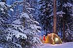 A tent is set up in the woods with Christmas lights and stocking near Anchorage, Alaska                                                                                                                  Stock Photo - Premium Rights-Managed, Artist: AlaskaStock              , Code: 854-02955070