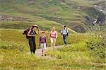 Female National Park Interpretive Ranger leades group on a *discovery hike* in the Eielson area Denali National Park Alaska                                                                              Stock Photo - Premium Rights-Managed, Artist: AlaskaStock              , Code: 854-02955156