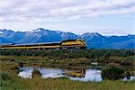 Alaska Railroad passenger train passes a pond at Potter Marsh. Summer in Southcentral Alaska.                                                                                                            Stock Photo - Premium Rights-Managed, Artist: AlaskaStock              , Code: 854-02955694