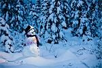 Snowman with colorful scarf and vest wearing a black top hat standing in snow covered spruce forest near Fairbanks, Alaska in Winter                                                                     Stock Photo - Premium Rights-Managed, Artist: AlaskaStock              , Code: 854-02955846