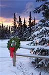 Holiday Wreath hanging on split-rail fence next to decorated tree w/sunset Anchorage Alaska Winter                                                                                                       Stock Photo - Premium Rights-Managed, Artist: AlaskaStock              , Code: 854-02955858