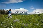 Woman hiking amongst Lupine and other wildflowers in Kenai Mountains along Lost Lake Trail near Seward, Alaska during Summer                                                                             Stock Photo - Premium Rights-Managed, Artist: AlaskaStock              , Code: 854-02955950