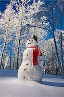 Snowman with red scarf and black top hat standing in front of snow covered Birch forest, winter, Eagle River, Alaska, USA.                                                                               Stock Photo - Premium Rights-Managednull, Code: 854-02956134