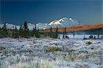 North face of Denali at sunrise with frost covered grass and Wonder Lake in the foreground in Denali National Park, Alaska                                                                               Stock Photo - Premium Rights-Managed, Artist: AlaskaStock              , Code: 854-02956230