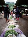 Chillies and vegetables in main market,Thimpu,Bhutan                                                                                                                                                     Stock Photo - Premium Rights-Managed, Artist: Axiom Photographic       , Code: 851-02958845