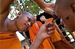 Novice monks having their heads shaved at Wat Naluang,Luang Prabang,Northern Laos                                                                                                                        Stock Photo - Premium Rights-Managed, Artist: Axiom Photographic       , Code: 851-02961339