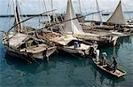 Dhows used for fishing & transport,Harbour in Stone Town,Zanzibar,Tanzania                                                                                                                               Stock Photo - Premium Rights-Managed, Artist: Axiom Photographic       , Code: 851-02963336