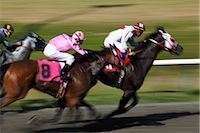 Horse Racing                                                                                                                                                                                             Stock Photo - Premium Rights-Managednull, Code: 700-02972805