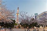 Nagoya TV Tower, Nagoya, Aichi Prefecture, Chubu, Japan