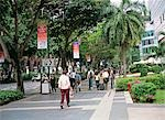 Orchard Road                                                                                                                                                                                             Stock Photo - Premium Rights-Managed, Artist: Oriental Touch           , Code: 855-02987851