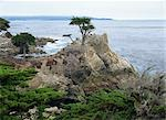 17 Mile Drive, San Francisco Stock Photo - Premium Rights-Managed, Artist: Oriental Touch           , Code: 855-02988121