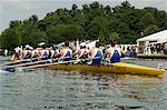 Rowing at the Henley Royal Regatta, Henley on Thames, England, United Kingdom, Europe                                                                                                                    Stock Photo - Premium Rights-Managed, Artist: Robert Harding Images, Code: 841-02992773
