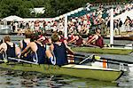 Rowing at the Henley Royal Regatta, Henley on Thames, England, United Kingdom, Europe                                                                                                                    Stock Photo - Premium Rights-Managed, Artist: Robert Harding Images, Code: 841-02992774