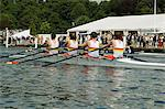 Rowing at the Henley Royal Regatta, Henley on Thames, England, United Kingdom, Europe                                                                                                                    Stock Photo - Premium Rights-Managed, Artist: Robert Harding Images, Code: 841-02992776