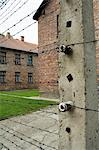 Auschwitz concentration camp, now a memorial and museum, UNESCO World Heritage Site, Oswiecim near Krakow (Cracow), Poland, Europe                                                                       Stock Photo - Premium Rights-Managed, Artist: Robert Harding Images, Code: 841-02992878