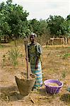 Pounding millet for flour, near Banjul, Gambia, West Africa, Africa                                                                                                                                      Stock Photo - Premium Rights-Managed, Artist: Robert Harding Images, Code: 841-02993279