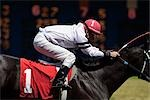 Jockey on Horse in Race                                                                                                                                                                                  Stock Photo - Premium Rights-Managed, Artist: Ed Gifford, Code: 700-03005167