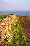 Stone Wall, Lizard Point, Lizard Peninsula, Cornwall, England, United Kingdom                                                                                                                            Stock Photo - Premium Rights-Managed, Artist: Tim Hurst                , Code: 700-03016980