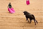 Matador and Bull, La Plaza de Toros de Las Ventas, Madrid, Spain Stock Photo - Premium Rights-Managed, Artist: Arian Camilleri          , Code: 700-03017114