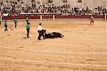 La Plaza de Toros de Las Ventas, Madrid, Spain Stock Photo - Premium Rights-Managed, Artist: Arian Camilleri          , Code: 700-03017119