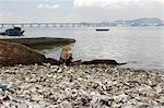 Worker shoveling oyster  on the seashore of Lau Fau Shan,Hong Kong                                                                                                                                       Stock Photo - Premium Rights-Managed, Artist: Oriental Touch           , Code: 855-03022981