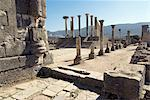 Forum, Roman site of Volubilis, UNESCO World Heritage Site, Morocco, North Africa, Africa                                                                                                                Stock Photo - Premium Rights-Managed, Artist: Robert Harding Images    , Code: 841-03030975
