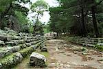 Greek ruins, Phaselis, Anatolia, Turkey, Asia Minor, Eurasia