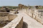 Ancient Roman city of Thugga (Dougga), UNESCO World Heritage Site, Tunisia, North Africa, Africa                                                                                                         Stock Photo - Premium Rights-Managed, Artist: Robert Harding Images    , Code: 841-03031607