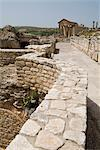 Ancient Roman city of Thugga (Dougga), UNESCO World Heritage Site, Tunisia, North Africa, Africa                                                                                                         Stock Photo - Premium Rights-Managed, Artist: Robert Harding Images    , Code: 841-03031608