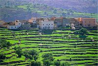 Terraced landscape, Taroudant, Morocco, North Africa                                                                                                                                                     Stock Photo - Premium Rights-Managednull, Code: 841-03032863
